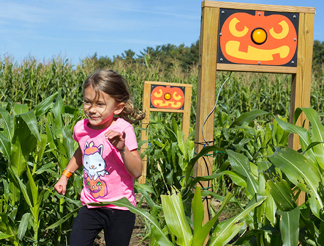 Corn Maze & Fall Fun