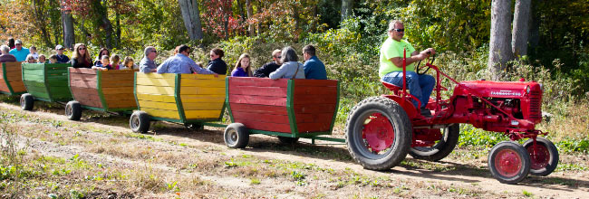 Kid-friendly activities on the farm - Plymouth County, Massachusetts